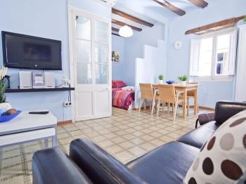Twee kamer appartement<br/> Palau de la Música 2bedrooms&nbsp;&nbsp;<small>(2 available)</small>